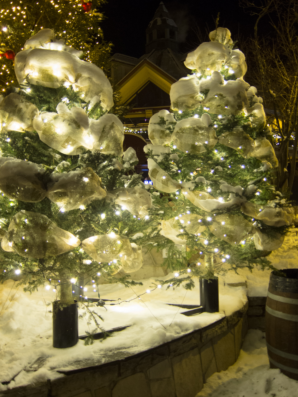 two pine trees decorated in snow and white ribbon