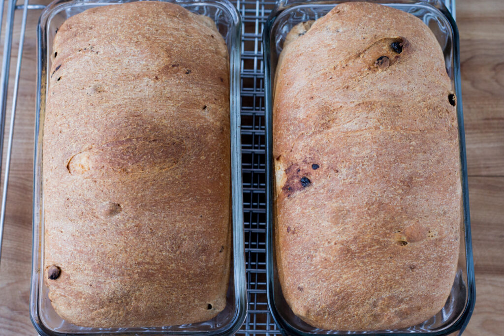 baked bread in bread pans