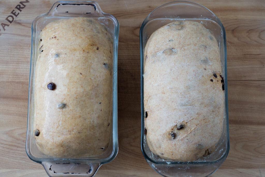 bread dough in bread pans