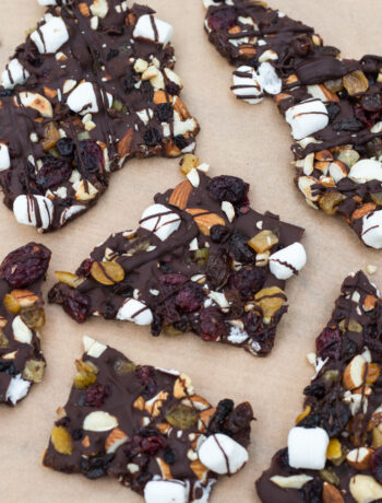 dried fruit and nuts and chocolate